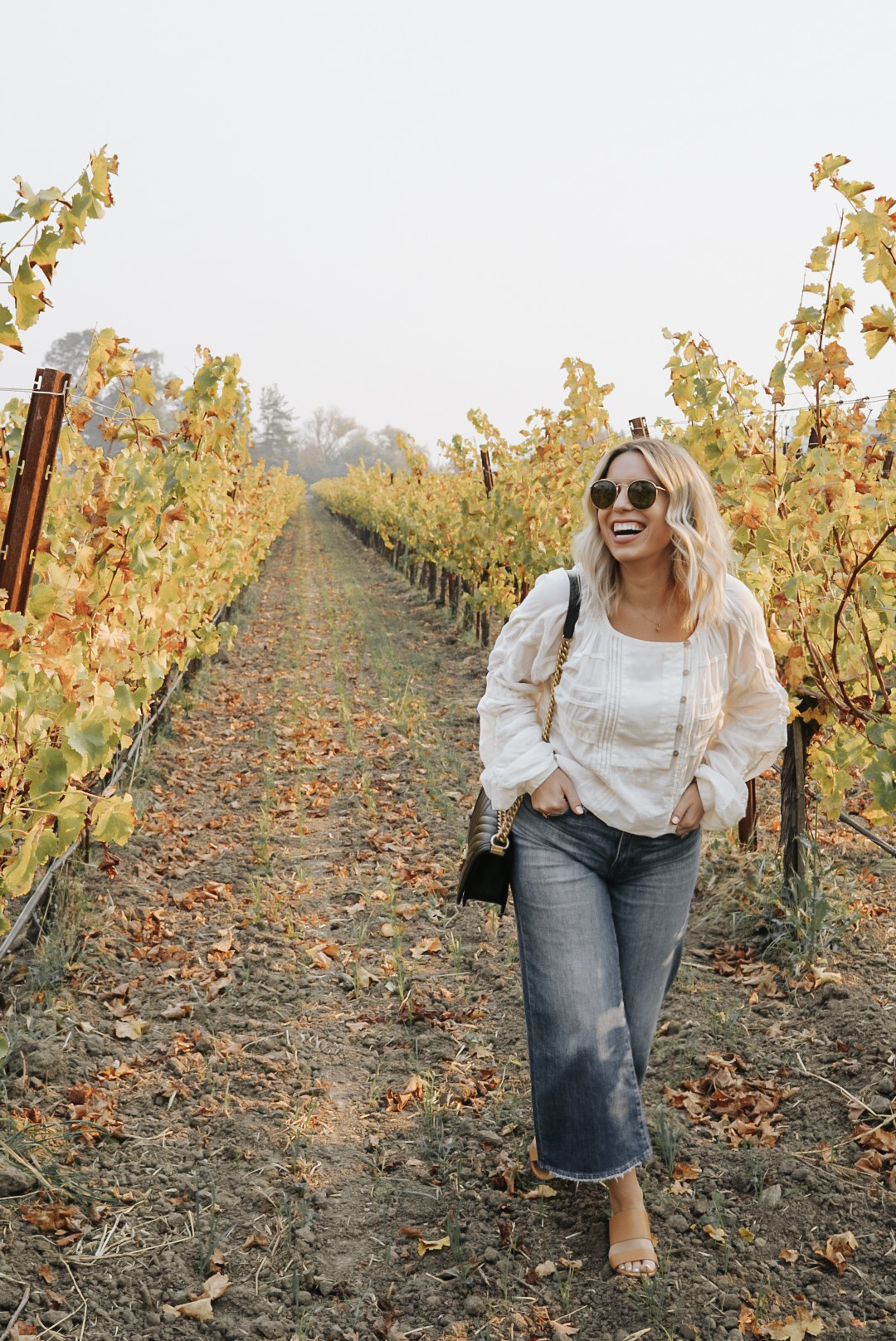 Napa Valley, where to stay, where to eat, where to Wine.